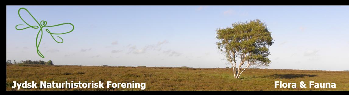 Jydsk Naturhistorisk Forening